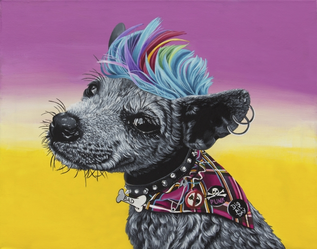 Punk, punkrock, pup, puppy, dog, rock, colorful, bright, cheery