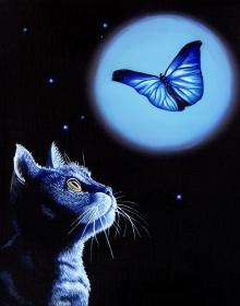 Kitten, Cat, Butterfly, Midnight, Garden, White Rose, Black Abbey Studios